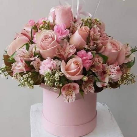 Box rosado bb